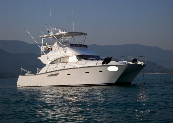 /barcos/pro-boat-46-powercat/